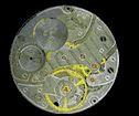 For your Sector watch repair,  visit Jjwatchrepiar.com