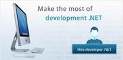Hire ASP.NET Developer for Website Development