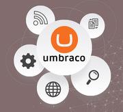 Skilled Umbraco Developer for Website Development