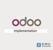 Odoo Implementation - To Encompass Several Phases of Business