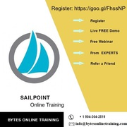 One-on-one Sailpoint Online Training by industry experts