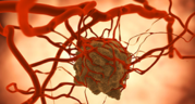 world biomedical frontiers Review