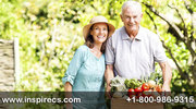 Reverse Mortgage Live Leads,  Debt Settlement Live Transfers