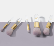 Are Your Looking 5 Piece Makeup Brush Set?