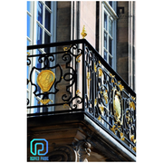 Luxury wrought iron railing for balconies,  stairs/ metal deck railing
