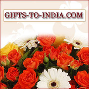 Order the Best Valentine's Day Gifts Online at Low Cost- Free Shipping